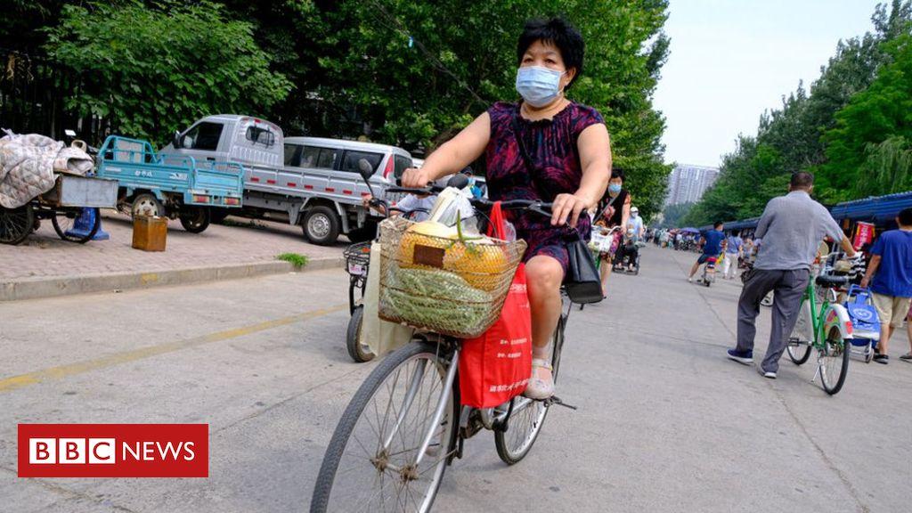 Coronavirus-Pandemie: Verfolgung des globalen Ausbruchs