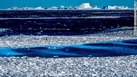 Wissenschaftler haben die erste Hitzewelle in diesem Teil der Antarktis aufgezeichnet