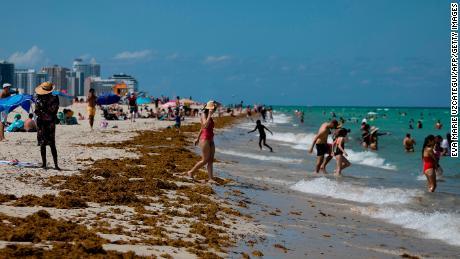 Als Florida aus dem Stillstand hervorgeht, nehmen die Fälle von Covid-19 zu