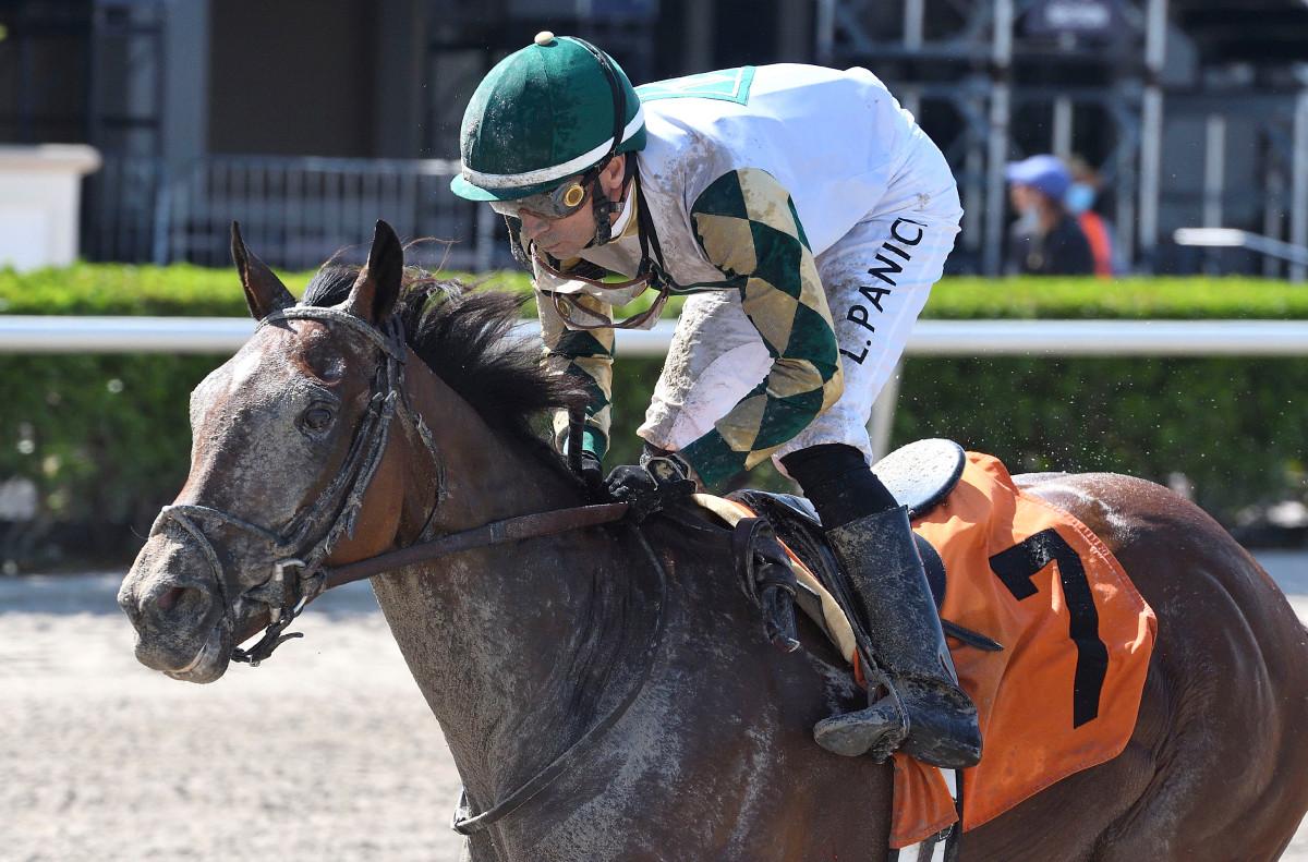 Sole Volante auf dem Weg in die Belmont Stakes