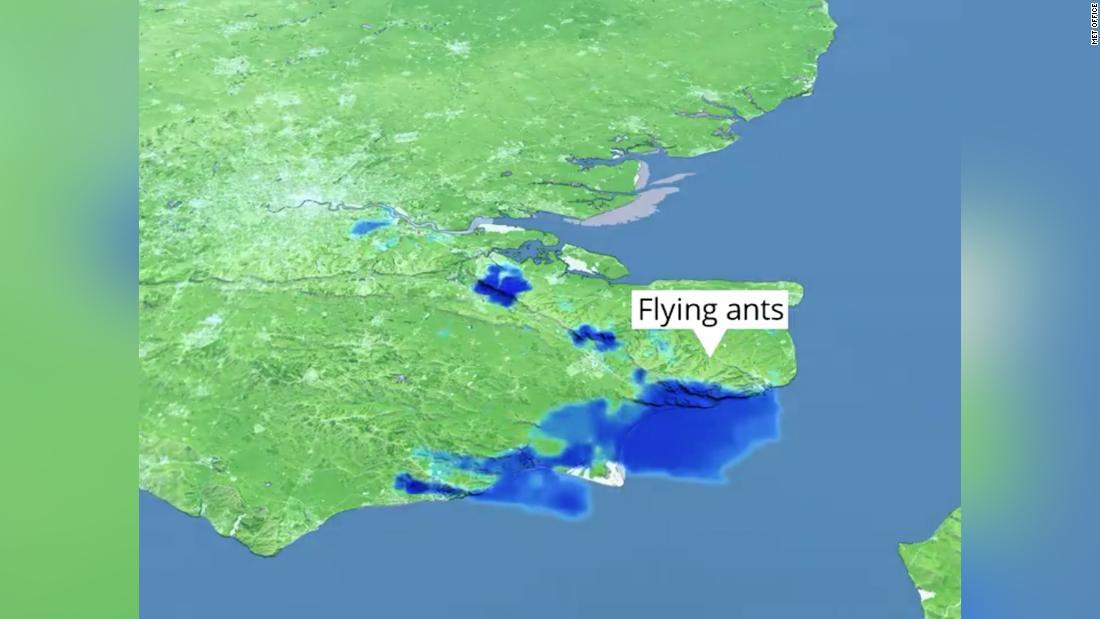 Ein 50 Meilen breiter Schwarm fliegender Ameisen sah auf dem britischen Wetterradar wie Regen aus