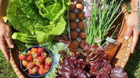 Obst, Gemüse, Kräuter und Eier von Soul Fire Farm.