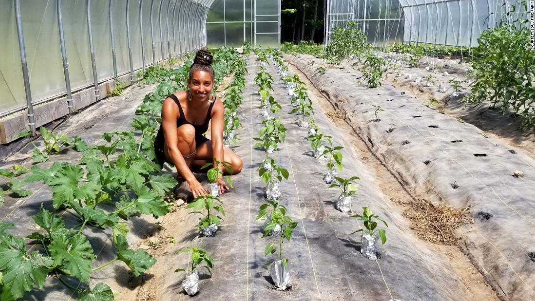 Warum eine neue Generation schwarzer Bauern in das Geschäft einsteigt