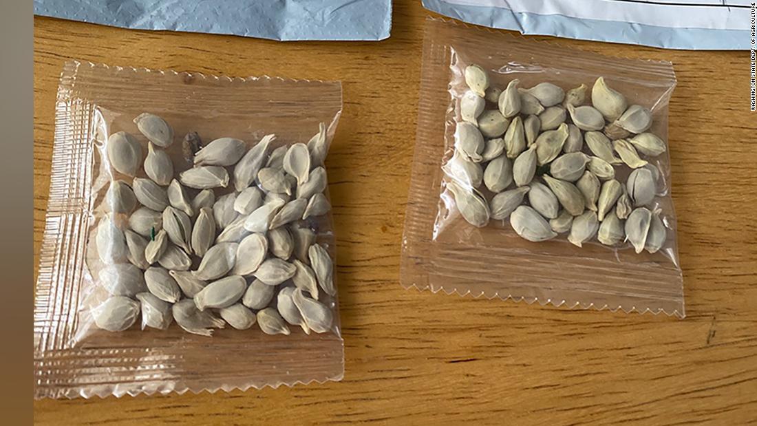 Staaten warnen die Menschen vor verdächtigen Samenpaketen, die anscheinend aus China stammen