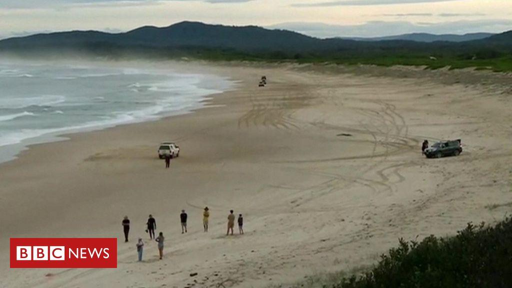 Der australische Surfer rettet seine Frau, indem er einen Hai schlägt